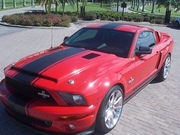2008 Ford Mustang GT 500 SUPER SNAKE